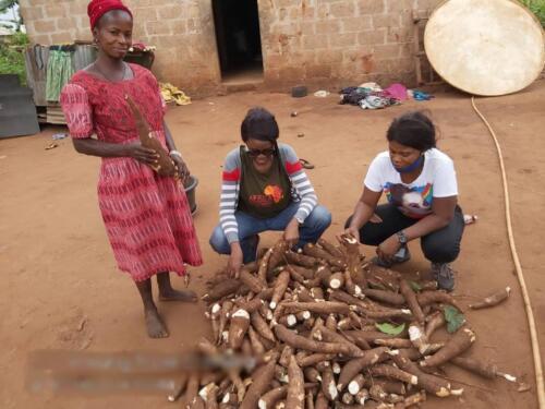 small holder farmer cassava peeling 1